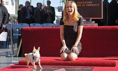 Reese Witherspoon Walk Of Fame Star