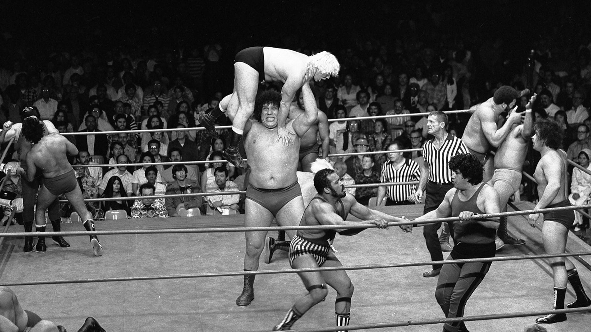 andre the giant roussimoff wrestling wrestler vince mcmahon injury suspension
