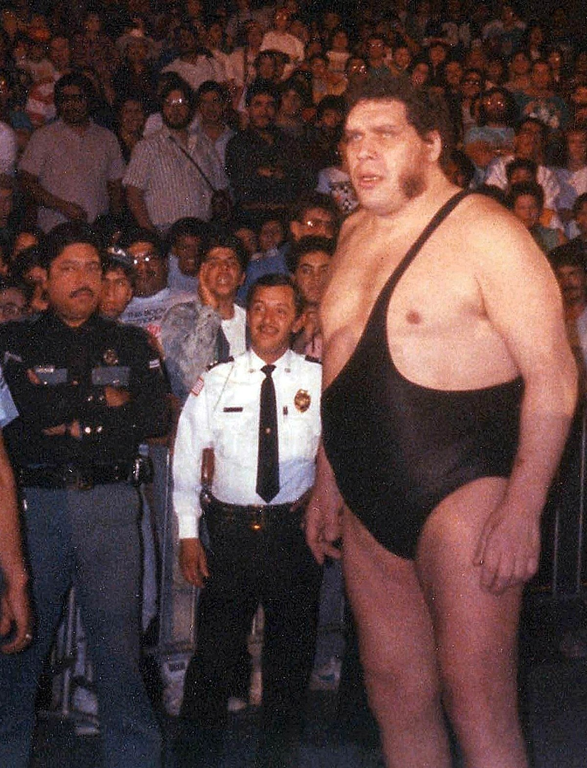 andre the giant fans superstar fifteen years andre roussimoff wrestling wrestler wwf world wide wrestling federation