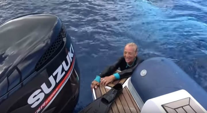 giant whale saves diver
